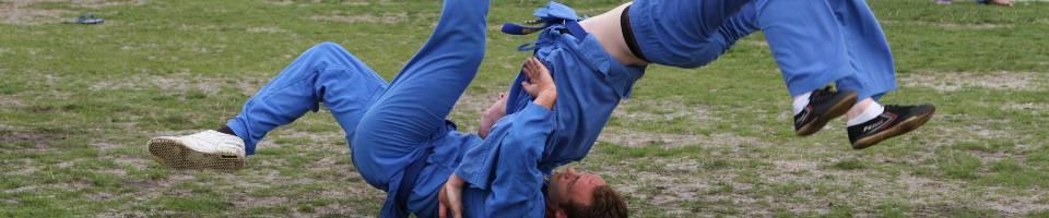 vovinam acrobatie